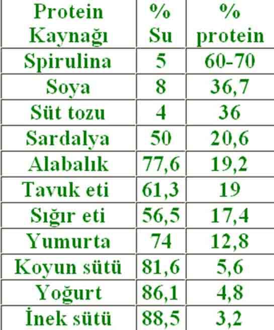 Protein Degeri Yuksek Besinler Besindegerleri Gen Tr